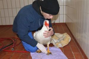 Waldemar mit Praktikant Pascal