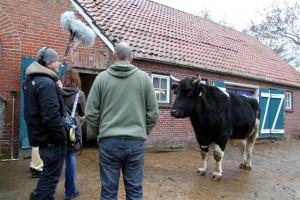 Alles im Blick: Willem
