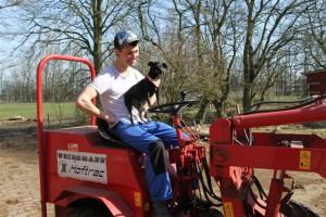 Kalle und das Zwergenmännchen bei der täglichen Arbeit