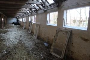 Heute: Alte Stallfenster raus und neue Fenster einbauen.