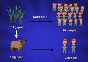Futtermittel Grafik