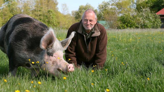 der-tierrechtler-und-gelernte-landwirt-jan-gerdes-mit-schwein-rosamariechen-100~_v-standard644_25bee6